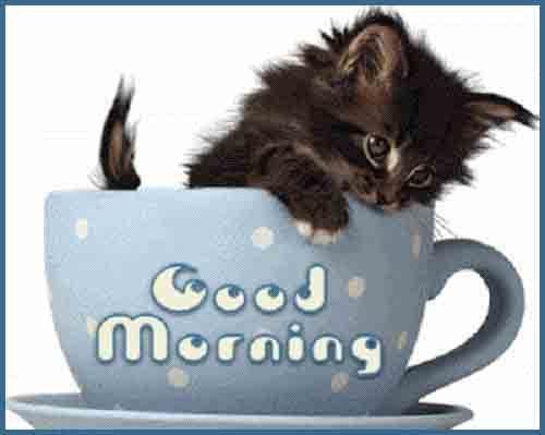 nice caption of good morning image