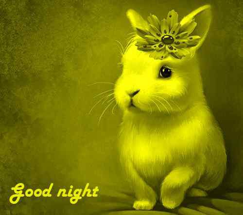 cute pictures of good night download