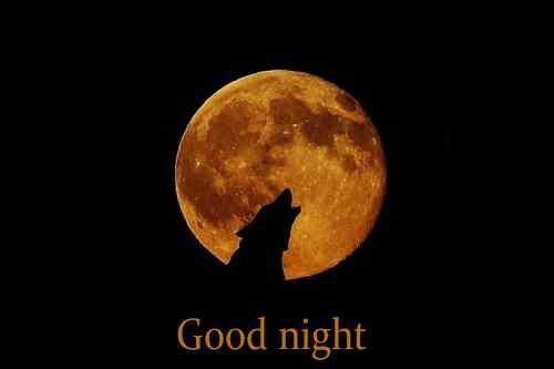 top pic of good night free download